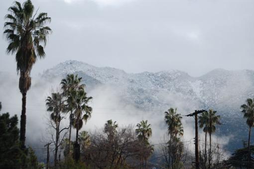 2008-01-24-altadena-snow-012sml.jpg