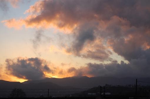 nuccios-sunsetsml.jpg